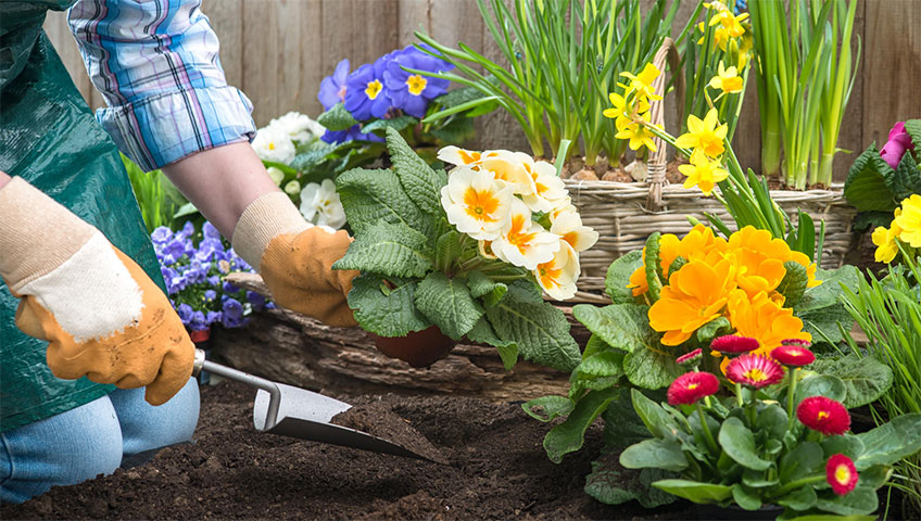 5-tips-to-prepare-your-garden-for-Spring-img